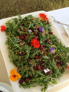 Arugula, Grape & Sunflower Seed Salad